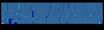 MyDealerOnline, Inc