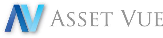 Asset VUE